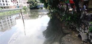 广东将扎实推动城市黑臭水体整治工作取得新成效