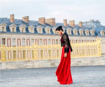 中法文化传播大使巩俐出席凡尔赛宫晚宴