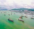 南海伏季休渔期结束        第十六届南海(阳江)开渔节开船仪式在闸坡国家级中心渔港高桩码头举行。