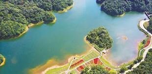 """广州公布5条森林生态游路线     2018中国森林旅游节将于12月16日~18日在广州举行,活动主题为""""绿水青山就是金山银山——粤森林,悦生活""""。"""