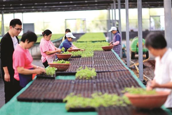 惠州瞄准新蓝海建设中医事业创新示范城