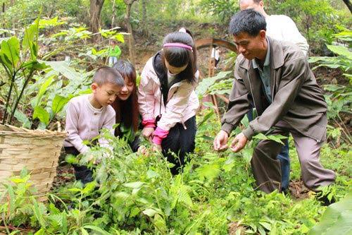 """一家人开心地在南丹山挖野菜,延续""""吃春菜""""习俗."""
